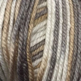 Ella Rae Cozy Soft Chunky # 301 - Swiss Marble - Mad Knitter's Yarn