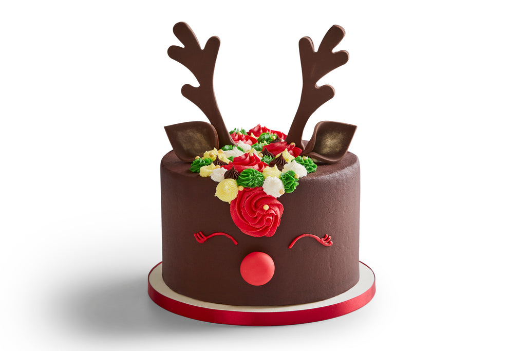 Christmas Chocolate Rainbow Reindeer Cake