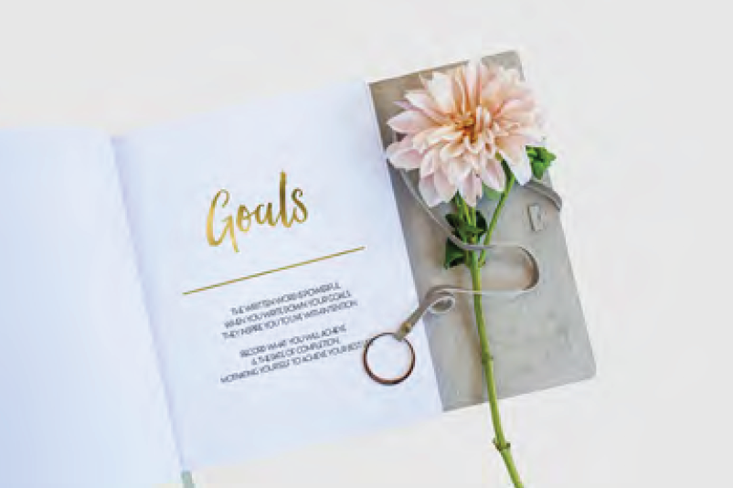 Goals Leather Bound Journal