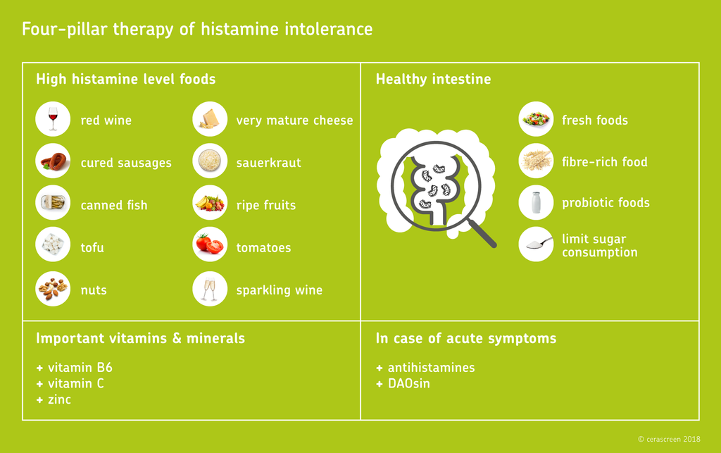Four-pillar therapy of histamine intolerance