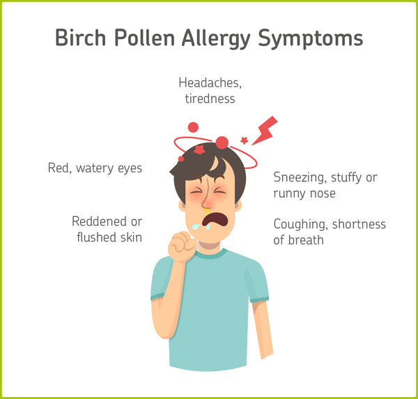Birch pollen allergy symptoms