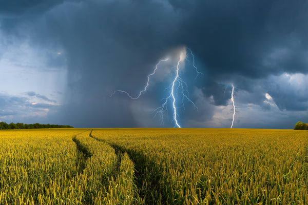 Hay fever symptoms can worsen during a storm