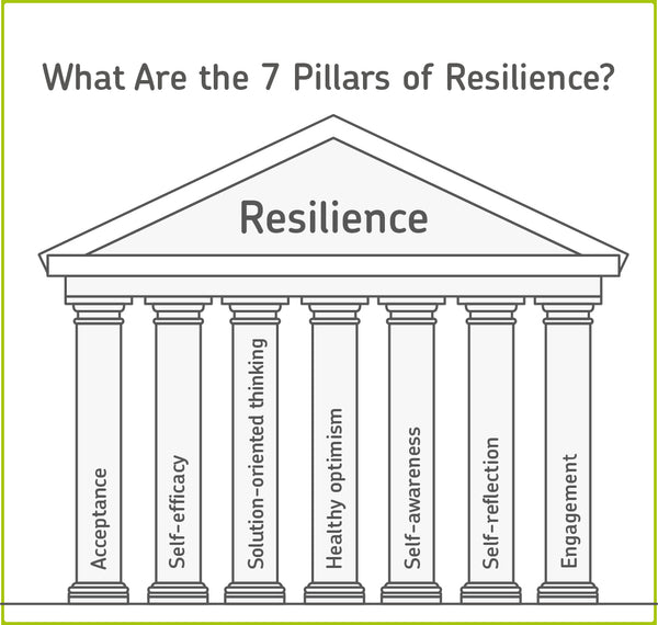 seven pillars of emotional resilience