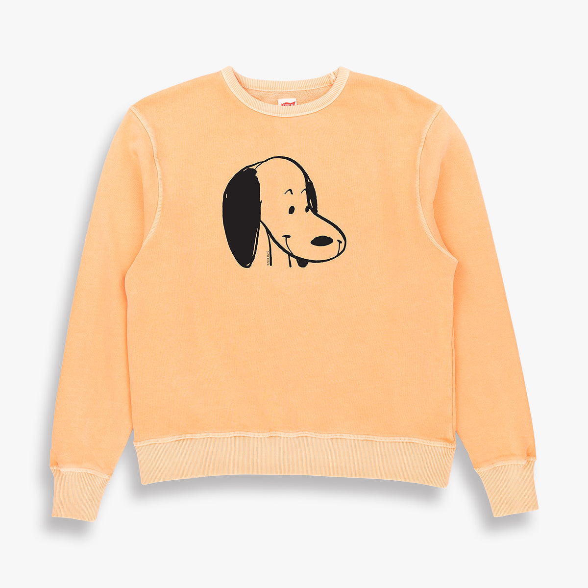 SNOOPY SWEAT
