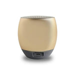 I-Master Bluetooth Speaker | Executive Corporate Gifts Singapore