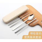 Eco Friendly Stainless Steel Travel Cutlery Spork and Straw Set | Executive Door Gifts