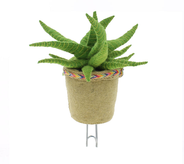 Cactus Wall Hook by Fiona walker england.