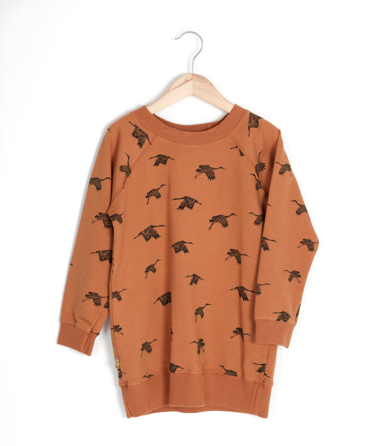 Birds Sweatshirt Dress  - Organic Cotton