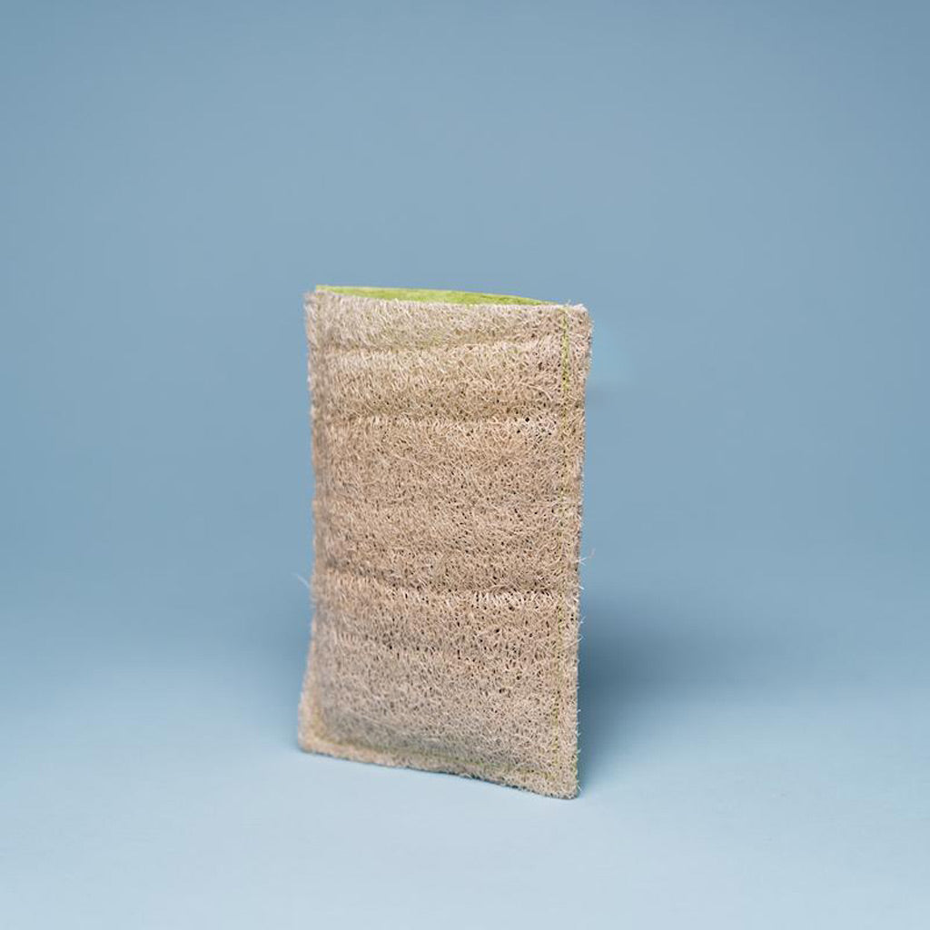 a loofah soap pouch without soap in it