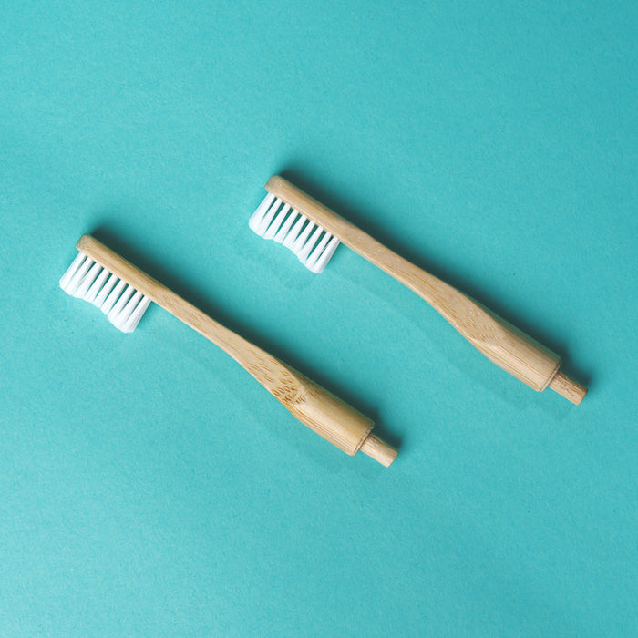 Replacement Toothbrush Head 2PK