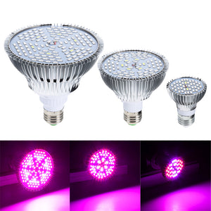 E27 30/50/80w Grow Light Led Full Spectrum Led Grow Light Lamp Plants Vegetables Hydroponic System LED Lighting Plant