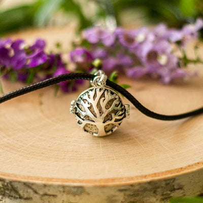 Tree of Life Bundle