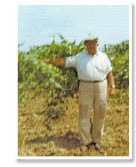 Opa Epp in the vineyard