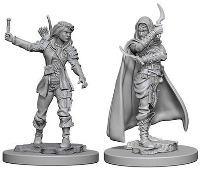 Buy Pathfinder Deep Cuts Unpainted Minis: Human Female Rogue and more Great RPG Products at 401 Games