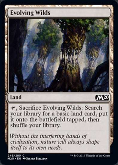 Evolving Wilds (M20) - 401 Games