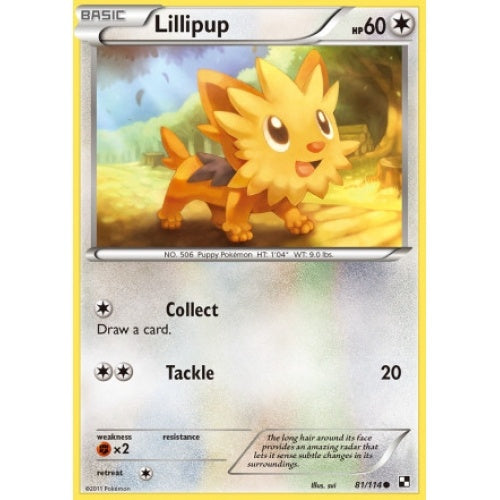 Lillipup - 81/114 - 401 Games