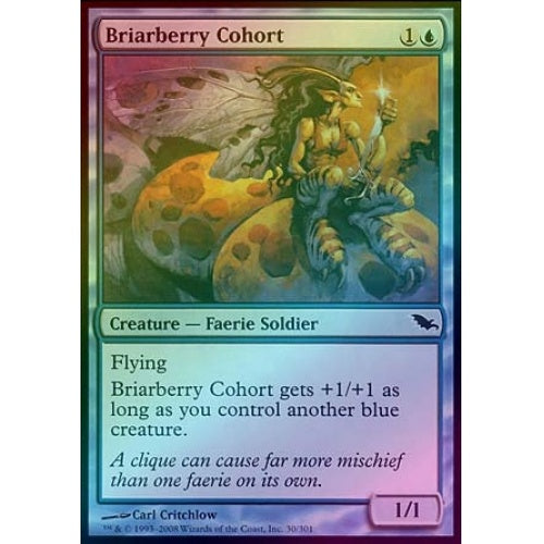 Briarberry Cohort (Foil) - 401 Games