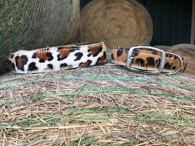 Leather Leopard Dog Collar