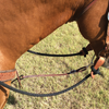 Martin Saddlery Bungee Tie Down