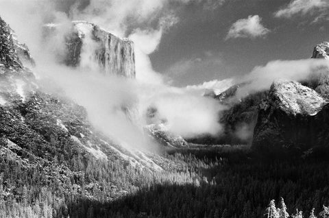 Infrared Black And White Film Photography