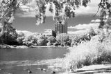 120 BW Film Ilford SFX200 Infrared (1 Roll)