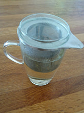 glass tea cup/stainless steel infuser. no plastic/loose tea