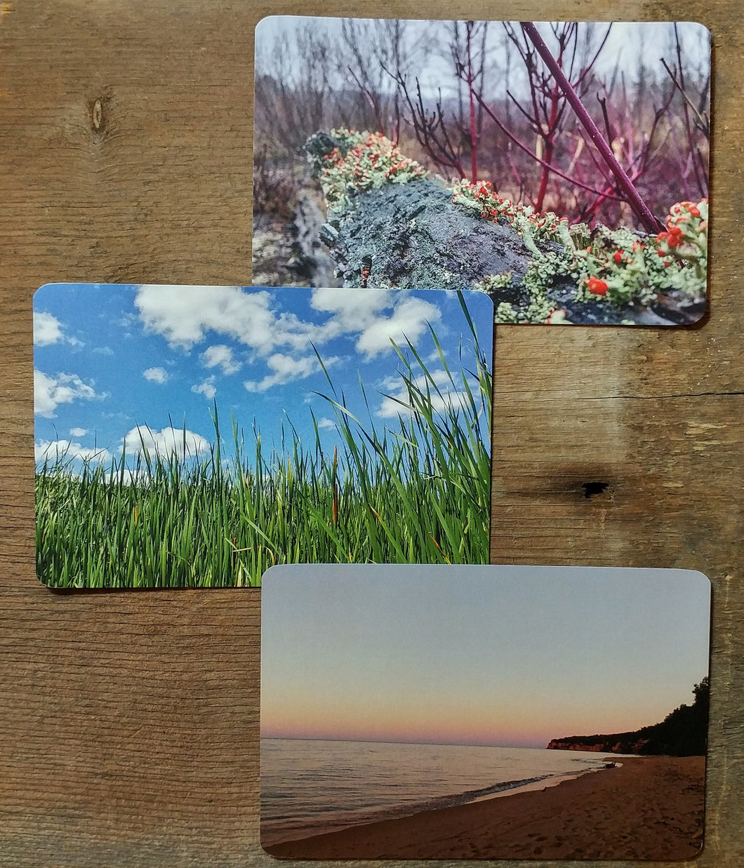 michigan inspired postcards, michigan adventures postal gifts, set of 3 postcards