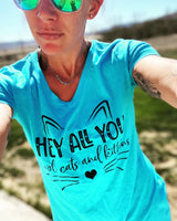 Hey All You Cool Cats and Kittens Ladies Tri-Blend V-Neck Tee {Tiger King}