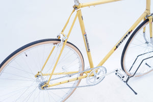 Gazelle Tour de l'Avenir (single-speed)