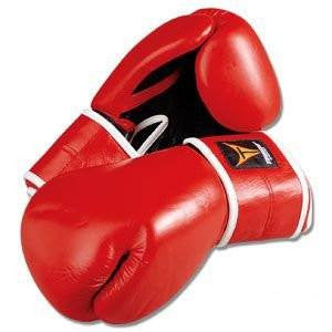 Proforce Kickboxing Fitness Glove