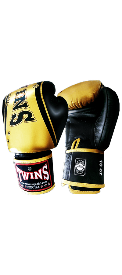 Twins Special Leather Fancy Gloves
