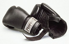 Everlast Leather Elite Mantis Mitts