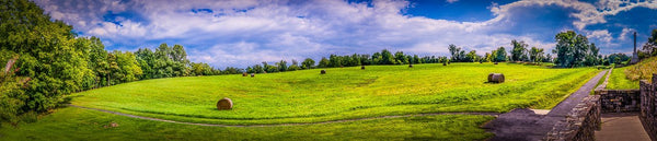 Digital Download Antietam Hayfield LIC