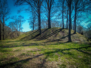 Digital Download Pocahontas Mound LIC