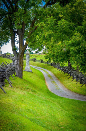 Digital Download Sunken Road East2 LIC