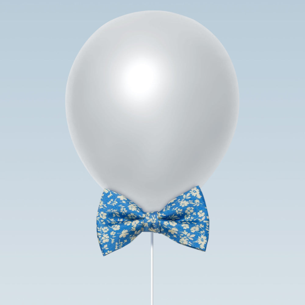 Little butterfly bow tie carnation print dolce blue and white balloon
