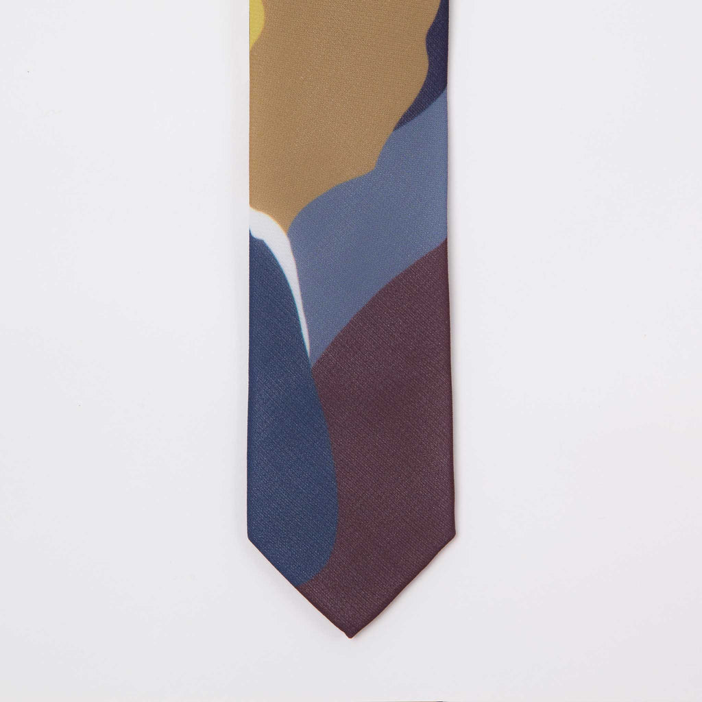 Pretied adjustable modern colorful print mini-tie neck tie for boys end