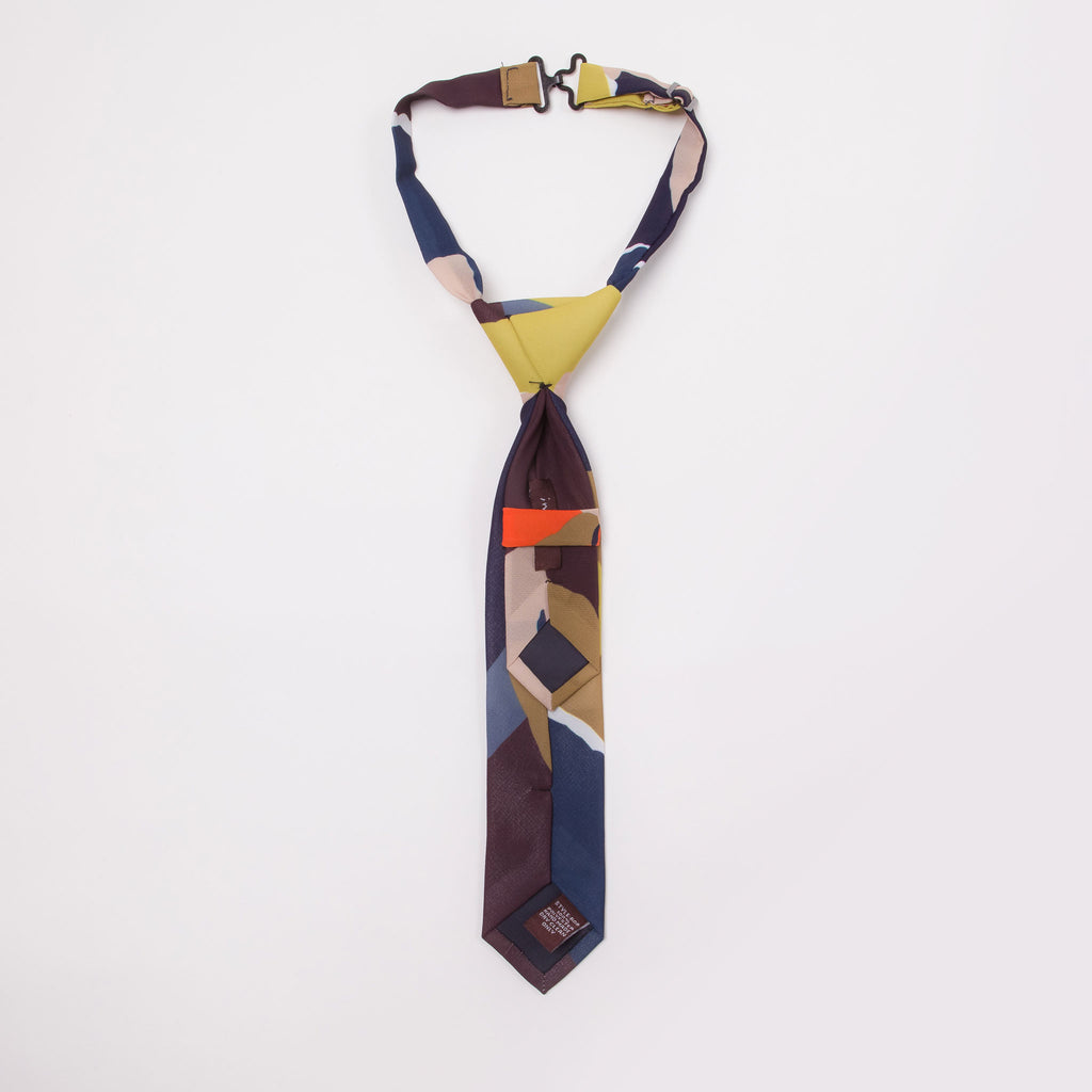 Pretied adjustable modern colorful print mini-tie neck tie for boys back