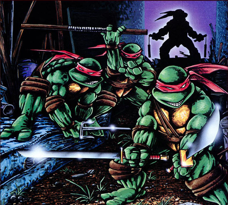 Character Spotlight: Teenage Mutant Ninja Turtles