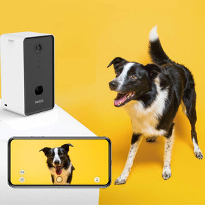 Cheaper Than Furbo |Dog Treat Camera, App Controlled: Watch Dog From Anywhere