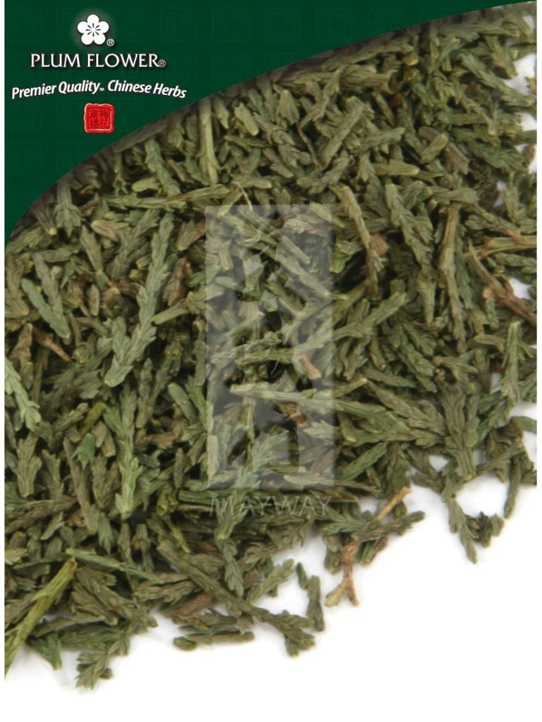 Biota orientalis leaf, Whole Herb, 500 grams, Ce Bai Ye