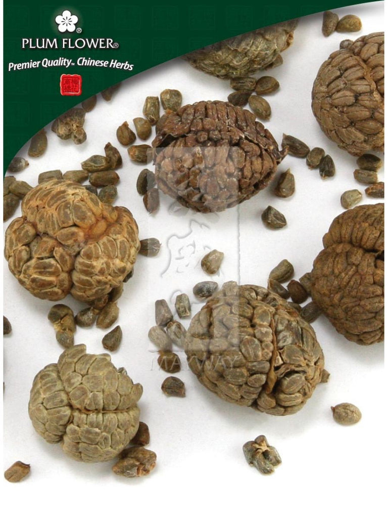Alpinia katsumadai seed, Whole Herb, 500 grams, Cao Dou Kou