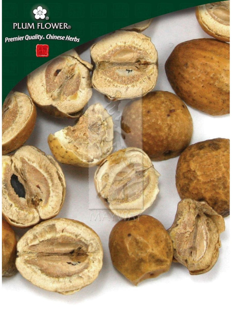 Melia toosendan fruit, Whole Herb, 500 grams, Chuan Lian Zi