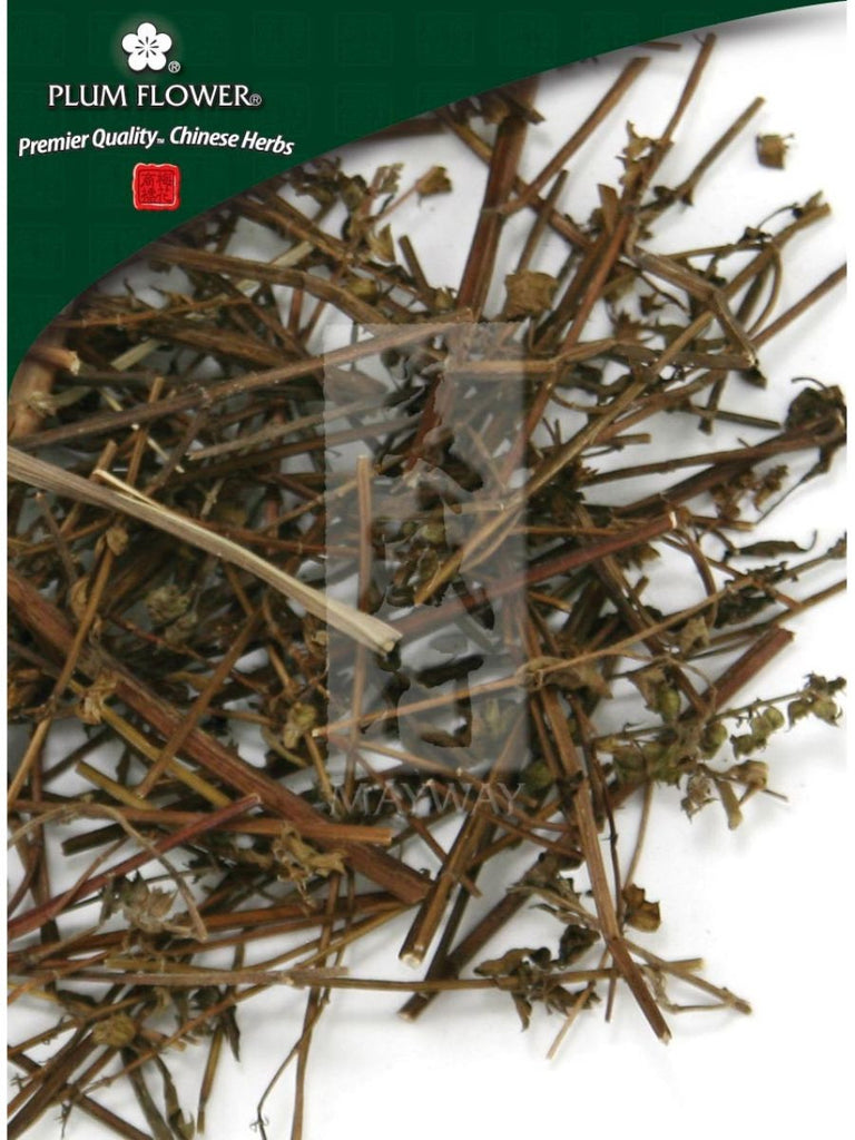 Elsholtzia splendens herb, Whole Herb, 500 grams, Xiang Ru Cao