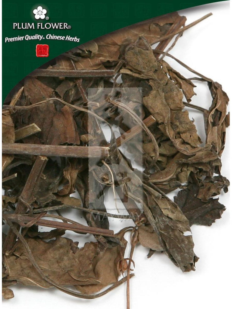 Salvia chinensis herb, Whole Herb, 250 grams, Shi Jian Chuan