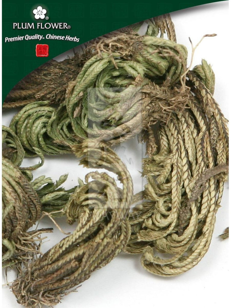 Selaginella involvens herb, Whole Herb, 500 grams, Juan Bai