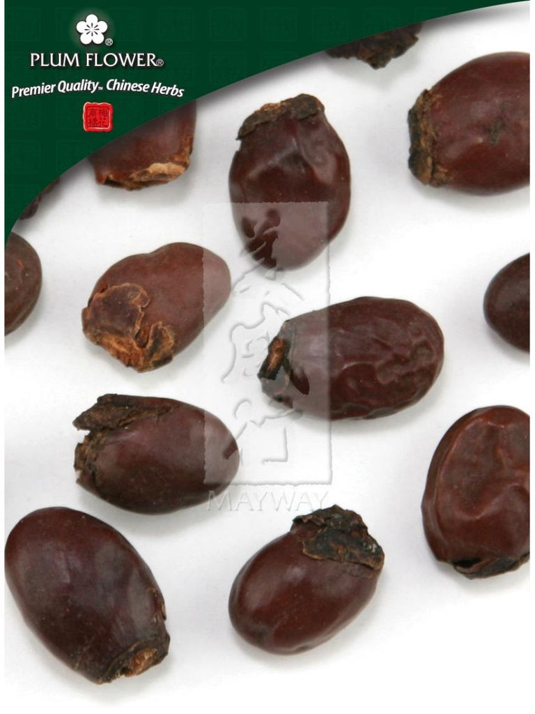 Litchi chinensis seed, Whole Herb, 500 grams, Li Zhi He