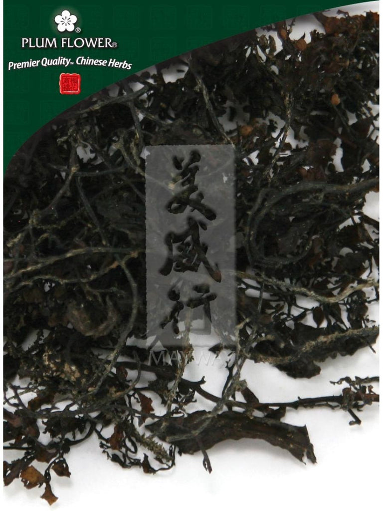 Sargassum pallidum herb, Whole Herb, 500 grams, Hai Zao