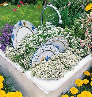Kitchen sink planter
