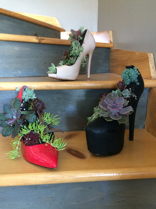 SUCCULENT SHOE PLANTER